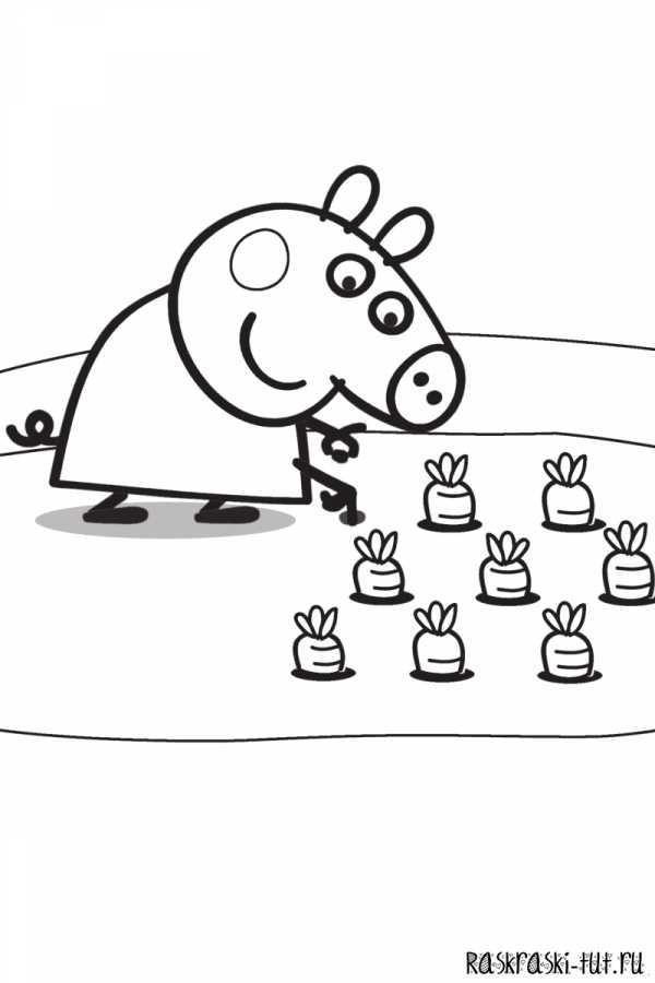 Картинки семья пеппы – Смешные картинки Свинка Пеппа (25 ...