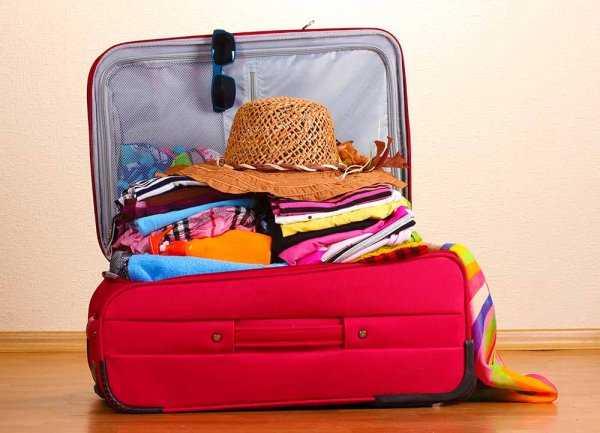 8010e6678c1e Ручная кладь женская сумка – какой багаж пассажиру разрешается взять ...